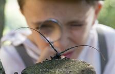 Eduard Punset i un insecte del Montsant protagonitzen un film de naturalesa