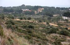 El nuevo barrio proyectado se construirá en esta zona que va desde las instalaciones del Nàstic hasta la urbanización de Boscos.
