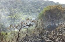 El incendio de la Selva del Camp quema más de 7.000 metros cuadrados