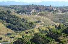 Una vintena de cellers participen a Tastets de Gratallops, la primera fira del vi de la localitat
