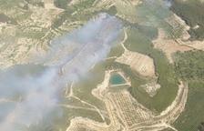 Un incendi a la Fatarella afecta quatre hectàrees de terrenys agrícoles i forestals