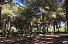 L'antic càmping El Buen Vino de Calafell es convertirà en un parc d'activitats de lleure