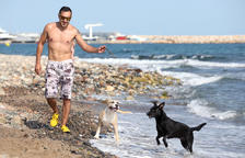 Només cinc municipis de Tarragona ofereixen platges per a gossos
