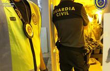Desmantellen una nova plantació de marihuana en un habitatge ocupat a Calafell