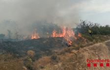 Un incendi crema zona boscosa propera al CIM del Camp