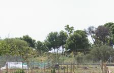 L'aspecte actual de les parcel·les ubicades al barri Sol i Vista.