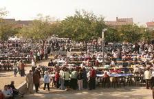 Imagen de la 18ª  Diada de la Puntaire en l'Arboç el año 2005.