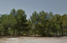Imatge del parc de la Muntanyeta de Tarragona.
