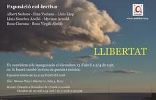 La Sala Quatre del Museu de la plaça Llibertat obre l'exposició col·lectiva 'Llibertat'