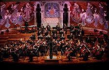 Imatge d'arxiu de l'Orquestra Simfònica Camera Musicae.