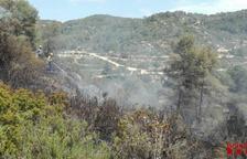 Un incendi crema una zona boscosa a Batea