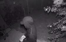 Imatge d'una càmera de seguretat del presumpte lladre a un domicili a la Platja Llarga.