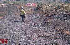 Incendi de vegetació a l'N-340 a la Canonja