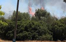 Los petardos provocan los primeros incendios en el Camp de Tarragona