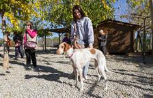 La segregació de la finca, solució per a la continuïtat del Refugi Baix Camp