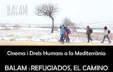 Els curts 'Balam' i 'Refugiados, camino de Europa' es projectaran a l'Espai Jove la Palmera