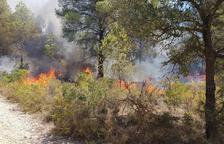 Incendio forestal en Sant Salvador