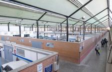 Destinan 535.083 euros a la retirada del fibrocemento del instituto Pere Martell
