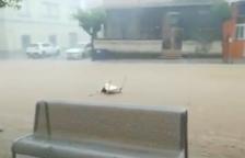 Les fortes pluges colpegen les Terres de l'Ebre