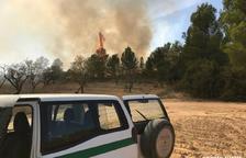 Un incendi ha cremat 5.163 metres quadrats de vegetació a Caseres