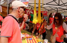 Castells, gegants, balls de bastons i activitats populars amenitzen la manifestació de la Diada