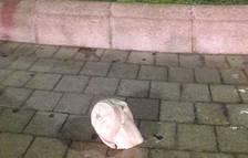 Acto vandálico en varias esculturas de la Fuente del Centenario de Tarragona