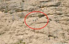 Tres persones sancionades per escalar en una àrea de prohibició temporal a la Terra Alta