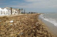 Imatge de l'estat de la platja de Sant Salvador després de l'huracà Leslie.