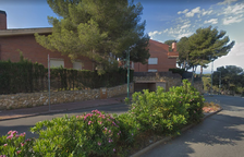 La Mora-Tamarit quiere la poda inmediata de las adelfas de la calle Blauet