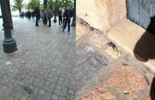 Denuncian la presencia de ratas muertas en el centro de Tarragona