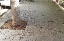 Imatge de l'estat de la vorera del carrer Manuel de Falla.