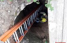 Els Bombers han utilitzat una escala per arribar al fons i rescatar l'animal.