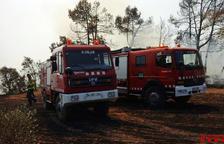 Cremen 300 metres quadrats de vegetació agrícola a la Selva del Camp