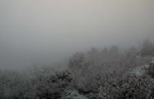 Arriba la primera nevada al Camp de Tarragona i a les Terres de l'Ebre