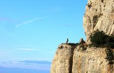 Una ruta d'extraordinària bellesa per descobrir el Balcó al Priorat