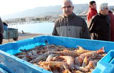 Els pescadors de la Ràpita baten el rècord de captura de llagostins amb 54.000 quilos el 2018