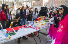 Estudiantes chinos celebran el Nuevo Año con actividades abiertas a todo el mundo