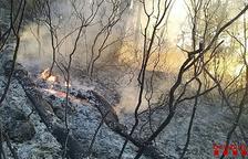L'incendi entre Bot i Caseres ha cremat 1,4 hectàrees