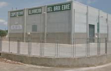 Denuncien al president de la Cooperativa Olivarera del Baix Ebre per ocultar els comptes de l'entitat