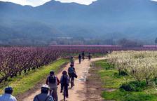 Ribera d'Ebre 2030 defensa la compatibilitat d'un futur industrial, turístic i agrícola per a la comarca