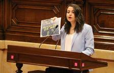 Cs acusa els independentistes de «manipular» la decisió del TJUE: «Immunitat no es impunitat»