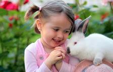 El teu conill s'ha quedat immòbil, relax o estrés?