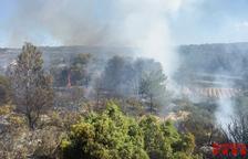 Un incendi de vegetació a Batea mobilitza sis dotacions de Bombers