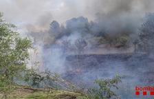 Extingit l'incendi forestal a Corbera d'Ebre, que ha cremat 1,55 hectàrees