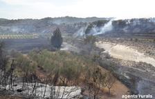 Estabilitzat l'incendi de Batea, que ja crema 20 hectàrees