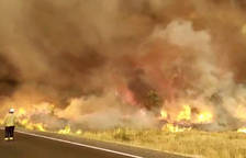 Els Agents Rurals rebaixen la superfície afectada per l'incendi de la Ribera d'Ebre a 5.169 hectàrees