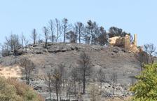 Unió de Pagesos exigeix una valoració urgent dels danys provocats pel foc a la Ribera d'Ebre