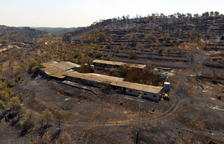 La Ribera d'Ebre pide seguir con los Planes de Empleo para la limpieza y desbrozado de la zona quemada hace dos veranos