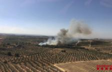 Els Bombers asseguraran el perímetre d'una illa forestal de 30 ha sense cremar a la Ribera d'Ebre