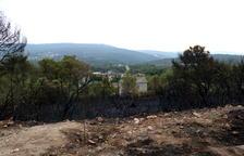Extingit l'incendi de vegetació forestal de Querol